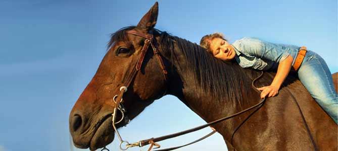 horse-love